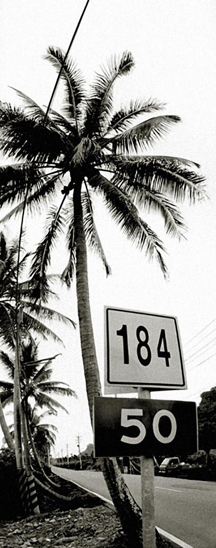 县道184